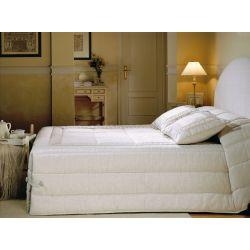 RANIA (Puntilla) Conforter 9 JVR